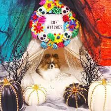 the nightmare before christmas indoor halloween decorations target