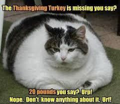 Turkey Day Meme - happy thanksgiving funny memes thanksgivingmeme thanksgiving
