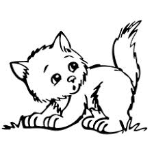 printable coloring pages kittens top 15 free printable kitten coloring pages online