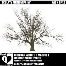 second marketplace winter trees bare trees winter iron