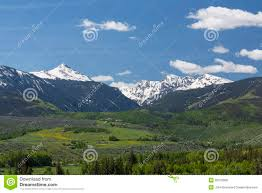 New York mountains images Grouse and new york mountains royalty free stock photos image jpg