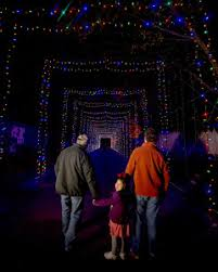 zoo lights memphis 2017 winter wonderland memphis zoo lights starry nights