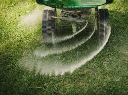how to winterize your lawn hgtv