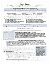 exles of executive resumes executive summary resume sles new exle healthcare services