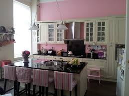 kitchen decorating pink small appliances kitchen color design