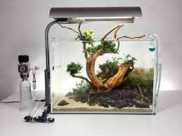 Aquascape Inspiration 457 Best Ideas Aquascape Images On Pinterest Aquarium Ideas