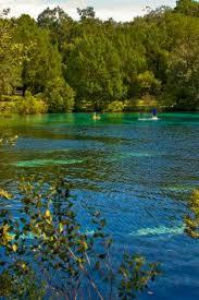 63 best silver glen springs images on florida springs