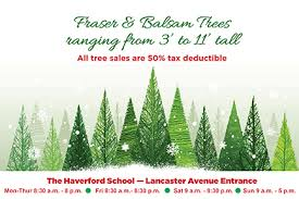 haverford school tree sale cus news stories the haverford