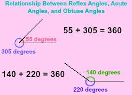 What Is A Reflex Action Example Reflex Angle Definition U0026 Examples Video U0026 Lesson Transcript