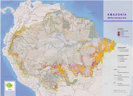 Amazon World Map by Deforestation Declines In The Amazon Rainforest
