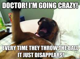 Dog Doctor Meme - doctor i m going crazy every time they throw the ball it just