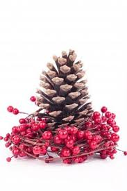 21 best pine cone crafts images on pinterest christmas