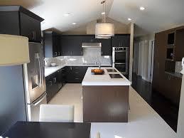 Kitchen Design Ideas 2012 Wondrous 2 Wall Kitchen Designs Two Wall Gallery Kitchen Ideas