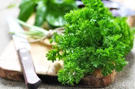 Spices Mediterranean Kitchen - 9 mediterranean herbs and spices to add to your pantry or garden