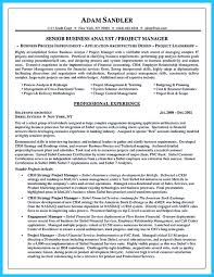 Best Business Analyst Resume Sample by The Most Excellent Business Management Resume Ever