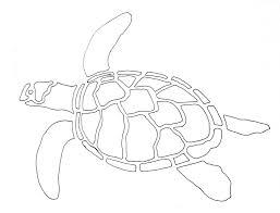 felines and fibre arts sea turtles part 2