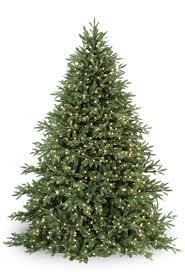 prelit christmas tree clp7304 led 6 5 ft prelit warm white carolina fir christmas tree