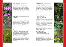 native plants of the pacific northwest wildflowers of the pacific northwest a timber press field guide