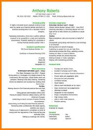 cfo curriculum vitae sample executive resume professional resume