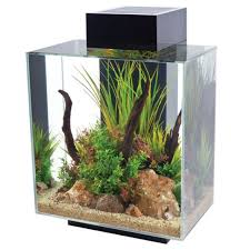 Fluval Edge Aquascape Fluval Edge 12 Gallon Black Aquarium 15391 Fish Tanks Direct
