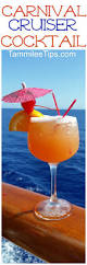 copy cat carnival cruise cruiser cocktail recipe cocktail