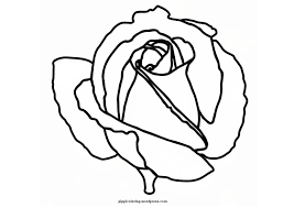 rose coloring page bebo pandco