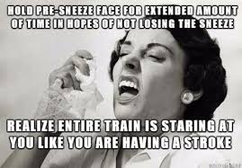 Sneeze Meme - i ve needed to sneeze all day damn these allergies meme on imgur