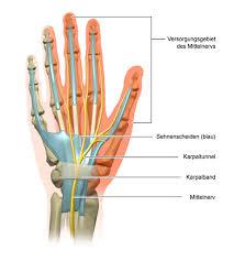 schmerzen in der handfläche karpaltunnelsyndrom gesundheitsinformation de