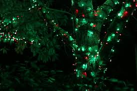 Botanical Gardens Atlanta Christmas Lights by Stella May I December 2016