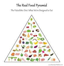 the real food pyramid what we u0027re designed to eat