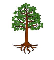 original tree with roots clipart panda free clipart images
