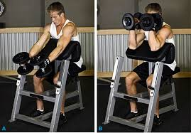 Bench Bicep Curls Bodybuilding Com U0027s 10 Highest Rated Biceps Exercises
