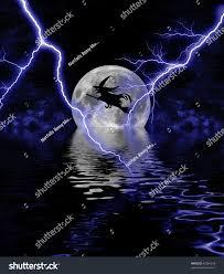 full moon on halloween custommagnet co