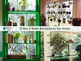 window herb harden diy 20 ideas of window herb garden for your kitchen
