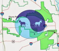 chicago gerrymandering map the dividist papers dialogues on divided government