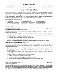 Resume Samples For Executives senior executive resume sample