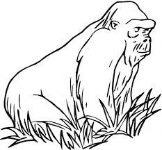 coloring page of gorilla gorilla coloring page gorilla free printable coloring pages animals