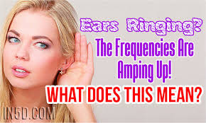 light headed ears ringing ears ringing the frequencies are amping up what does this mean