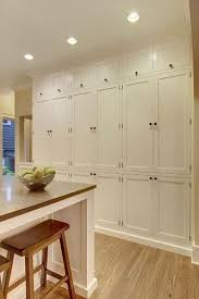 kitchen cabinet pantry ideas best 25 pantry cabinets ideas on kitchen pantry