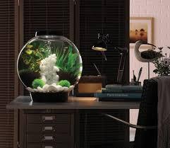 biorb 30 black aquarium with standard led light gardensite co uk