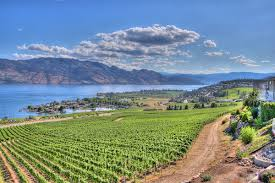Kelowna Luxury Homes by Discover Luxury Real Estate In Canada