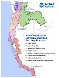 Northern Oregon Coast Map by An Introduction To Salmon Recovery Planning Under The Endangered