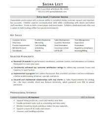 Resume Customer Service Skills Examples by Summary Of Qualifications Resume Customer Service Best Free