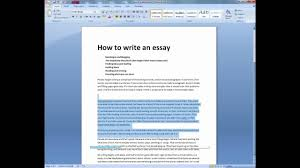 writing essays for college admissions english b extended essay