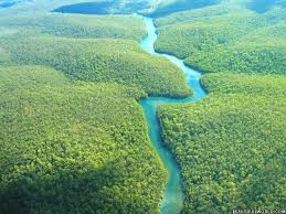 amazon basin amazon rain forest facts information beautiful world travel guide