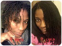 pictures of sister twists sisterlocks hairstyles nikkis sisterlock journey