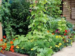Types Of Vegetable Gardening by Combining Vegetables And Flowers In Your Garden Diy
