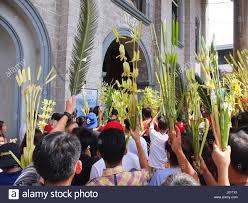 palm fronds for palm sunday catholic devotees waving their palm fronds celebrating palm sunday