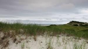 sand dunes beach on the cape cod national seashore on the atlantic