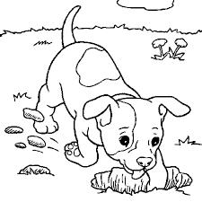 Coloriage Petit chien en Ligne Gratuit à imprimer